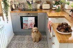 1588296797_Farmhouse-Kitchen-Ideas