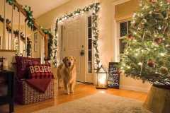 amazing-Christmas-ideas-for-farmhouses-33